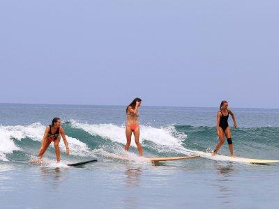 фото Серфинг в школе Endless Summer 1
