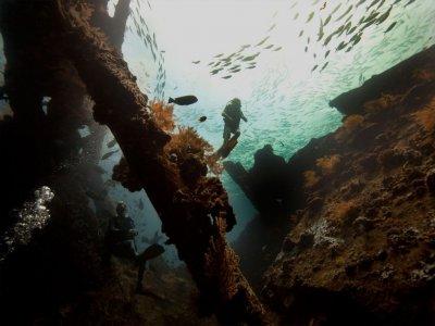 фото Дайвинг на Бали 3