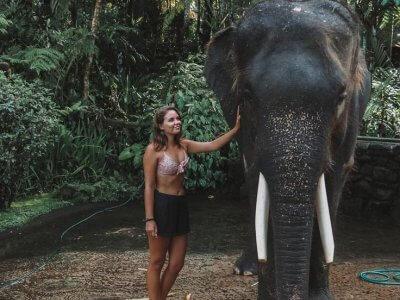 фото Парк слонов на Бали 3