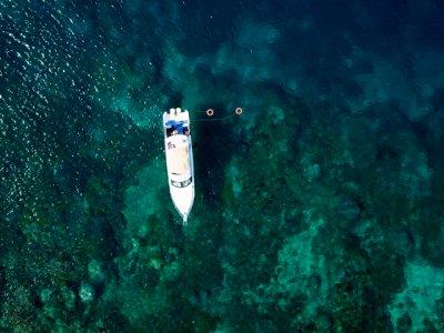 фото  Wisata Kapal Pesiar dan Memancing di Spot Karang 3